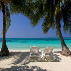 Sitting in Paradise
